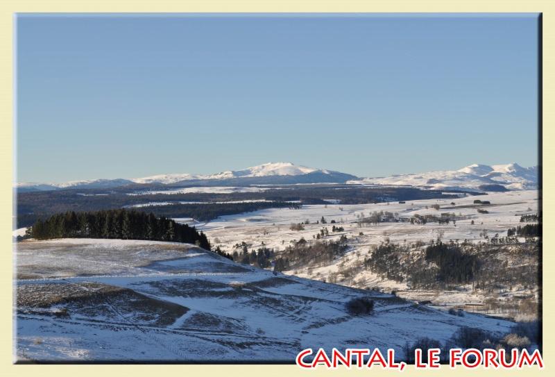Photos du Cézallier en Février 2012 Dsc_8513