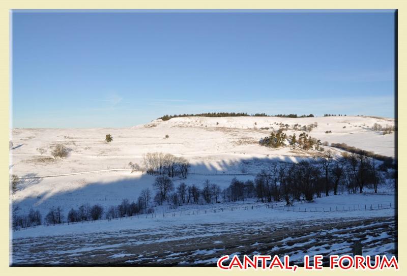 Photos du Cézallier en Février 2012 Dsc_8514