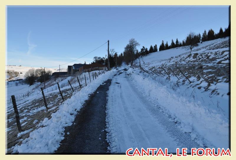Photos du Cézallier en Février 2012 Dsc_8515