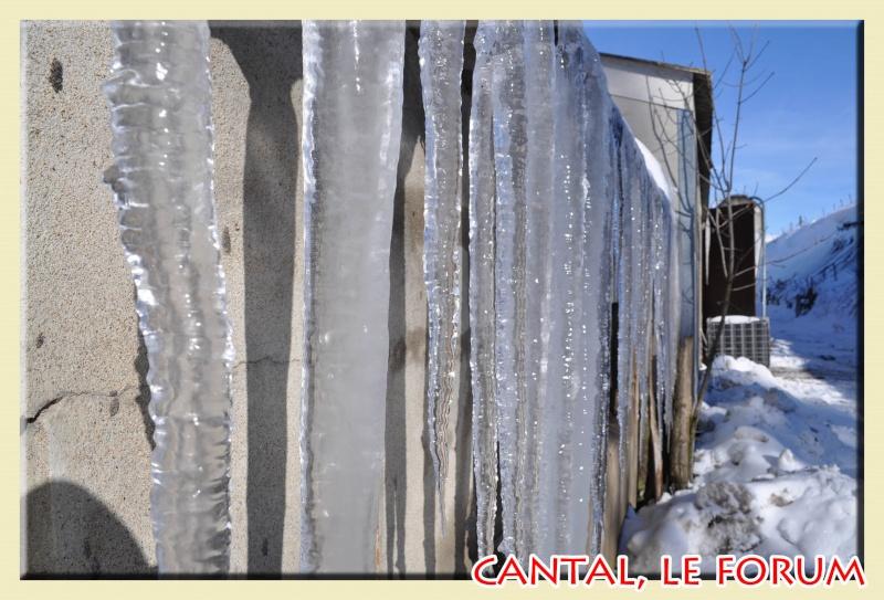 Photos du Cézallier en Février 2012 Dsc_8516