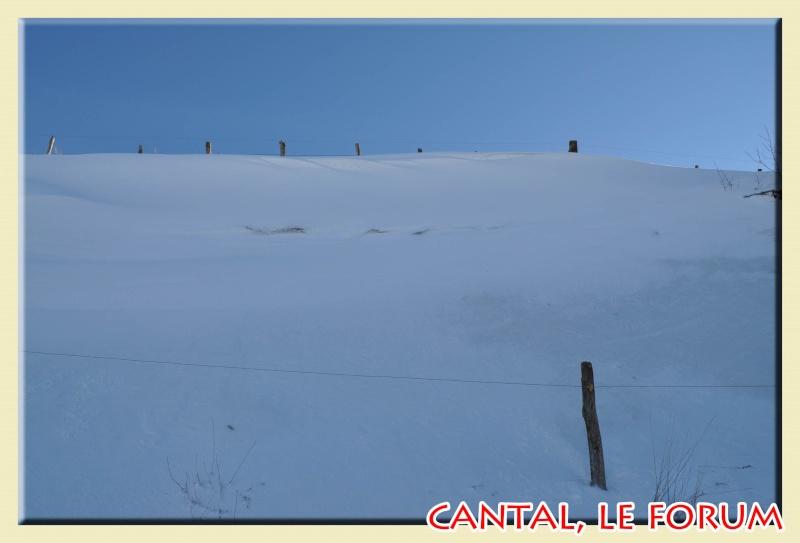 Photos du Cézallier en Février 2012 Dsc_8518