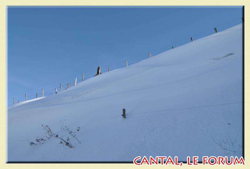 Photos du Cézallier en Février 2012 Dsc_8519