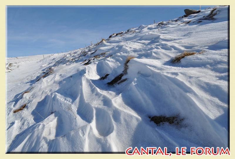 Photos du Cézallier en Février 2012 Dsc_8521