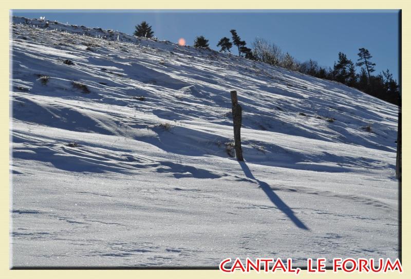 Photos du Cézallier en Février 2012 Dsc_8522