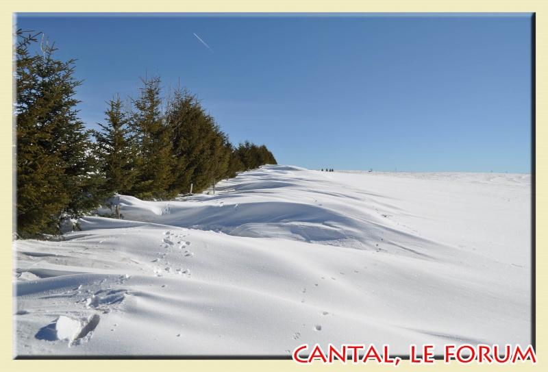 Photos du Cézallier en Février 2012 Dsc_8612