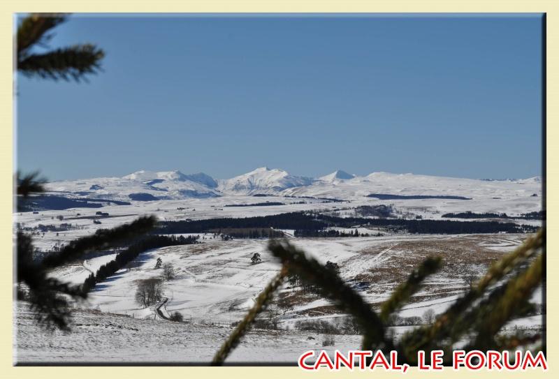 Photos du Cézallier en Février 2012 Dsc_8613