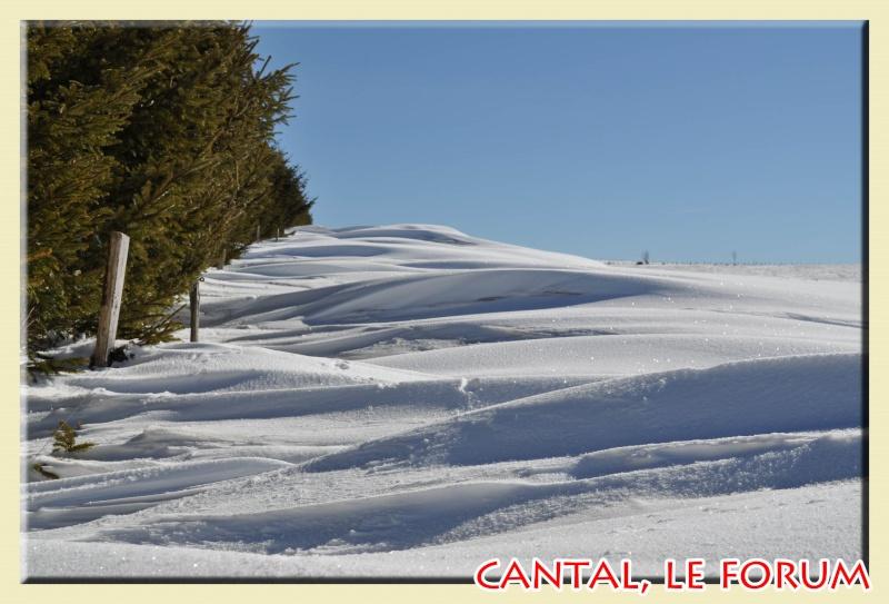 Photos du Cézallier en Février 2012 Dsc_8615