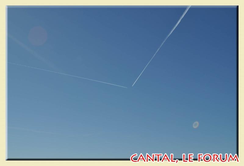 Photos du Cézallier en Février 2012 Dsc_8616