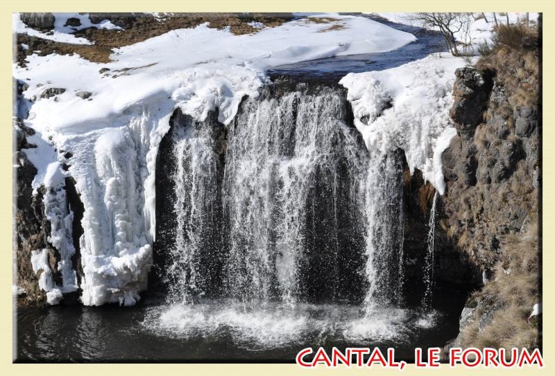 Photos du Cézallier en Février 2012 Dsc_8619