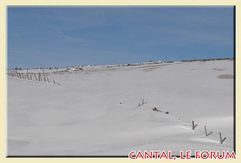 Photos du Cézallier en Février 2012 Dsc_8716