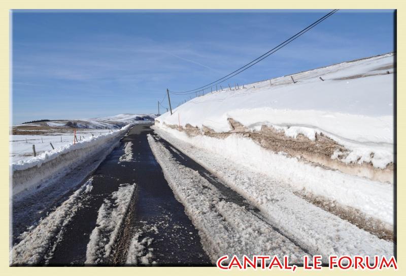 Photos du Cézallier en Février 2012 Dsc_8717