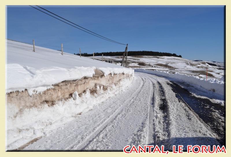 Photos du Cézallier en Février 2012 Dsc_8718
