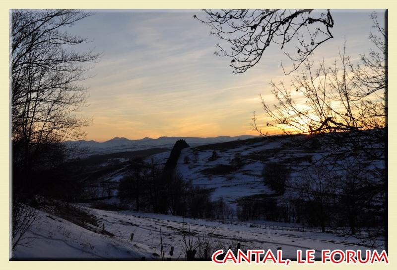 Photos du Cézallier en Février 2012 Dsc_8723