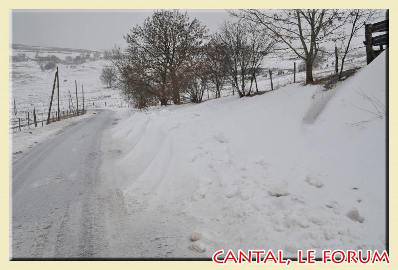 Photos du Cézallier en Février 2012 Dsc_8725