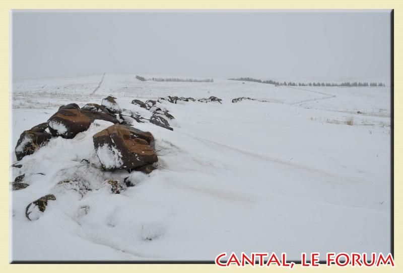 Photos du Cézallier en Février 2012 Dsc_8813