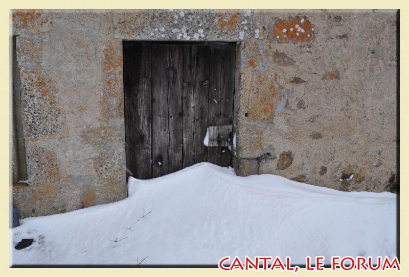 Photos du Cézallier en Février 2012 Dsc_8814