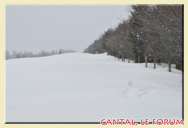Photos du Cézallier en Février 2012 Dsc_8815