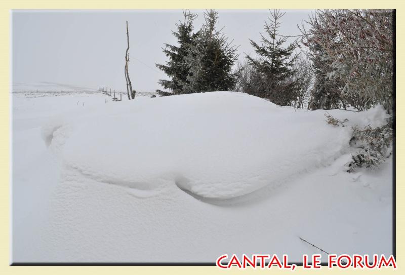 Photos du Cézallier en Février 2012 Dsc_8817