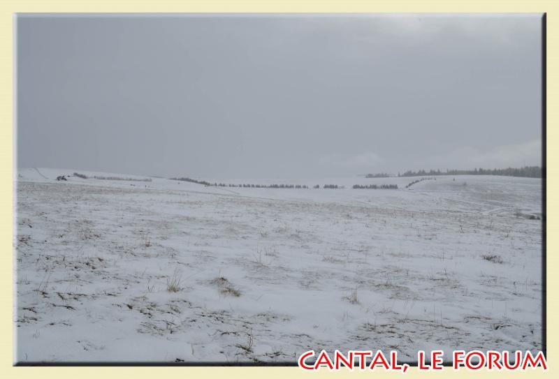Photos du Cézallier en Février 2012 Dsc_8914