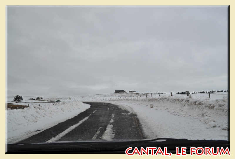 Photos du Cézallier en Février 2012 Dsc_8917