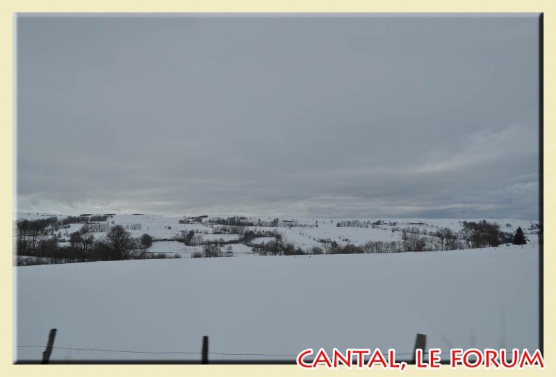 Photos du Cézallier en Février 2012 Dsc_9014