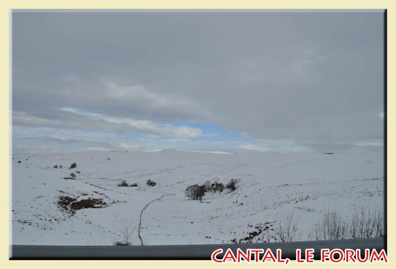 Photos du Cézallier en Février 2012 Dsc_9015