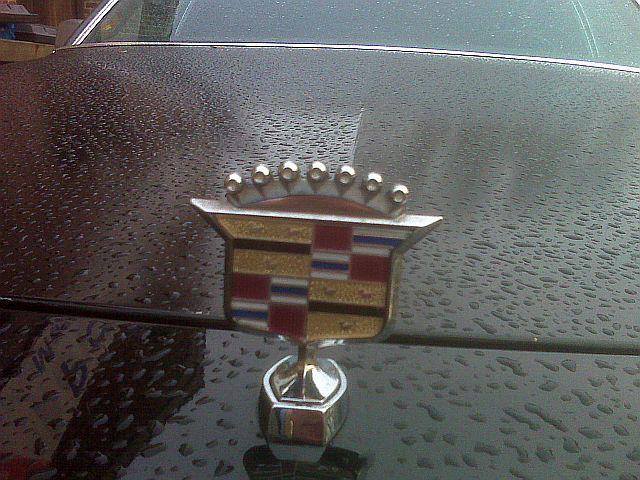 Cadillac M.G. - Zufallssichtung 530