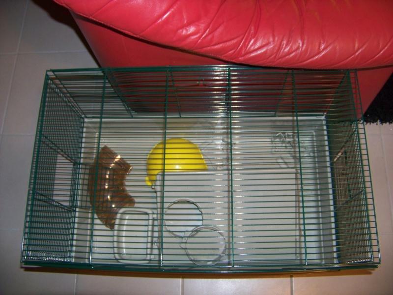Vends Cage pliable sur Tours 100_7013