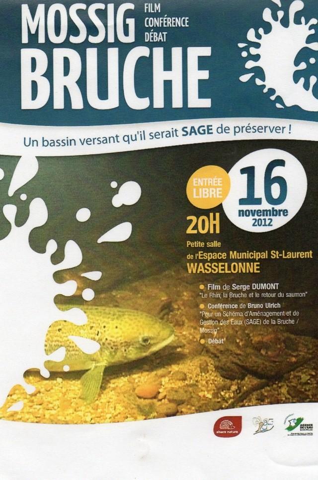Film/conférence SAGE Mossig Bruche à Wasselonne Img03213