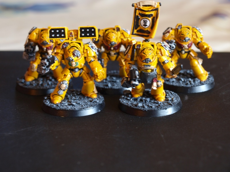 Galerie d'Imperial Fist Pa101010