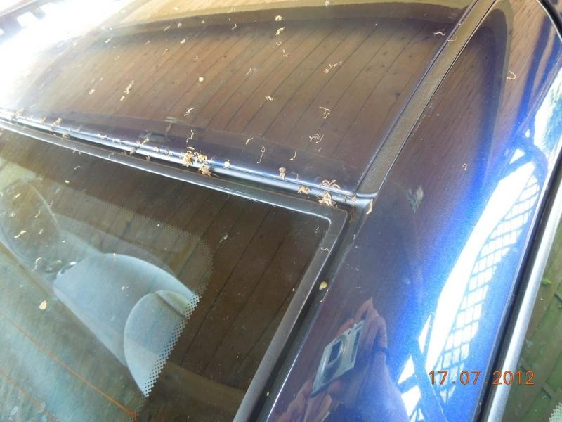 Astra F Showcar - Vectra B - Astra H Caravan - Seite 10 03010