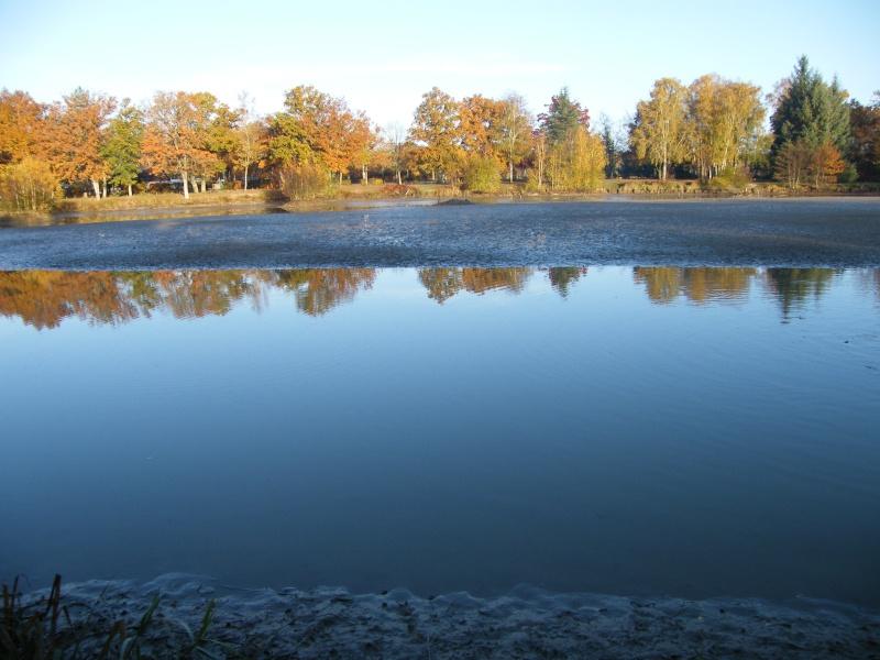 plan d eau de la ferté imbault Dscf0515