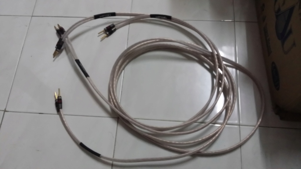 QED Ruby Anniversary Evolution speaker cable 20190624