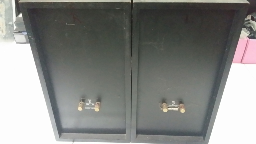 Celestion SL6si speaker 20190630