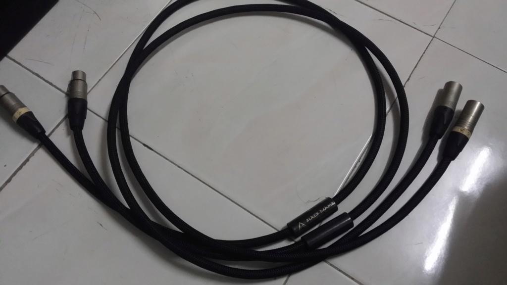 Shunyata Black Mamba XLR Interconnect Cable 20191117