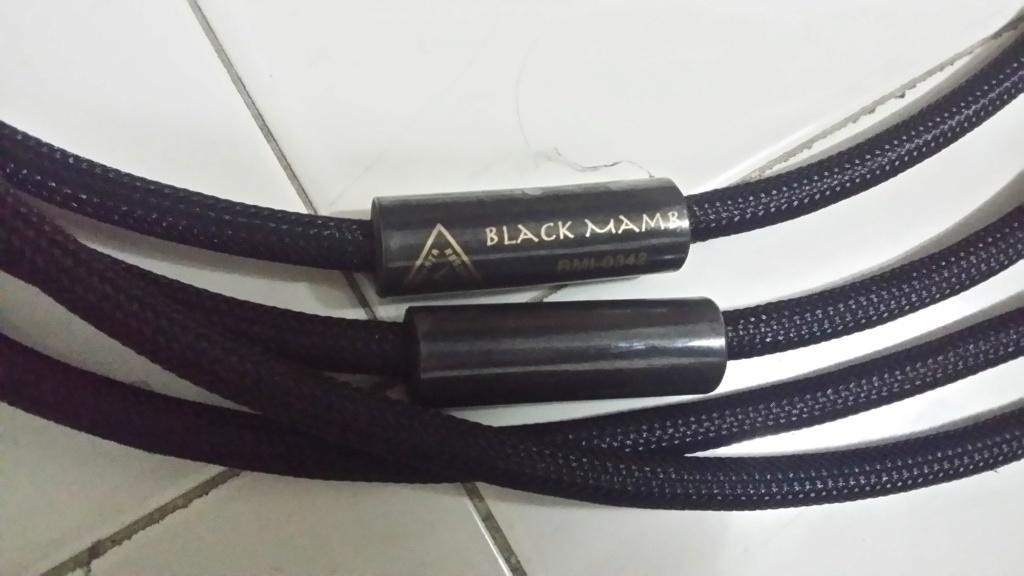 Shunyata Black Mamba XLR Interconnect Cable 20191118