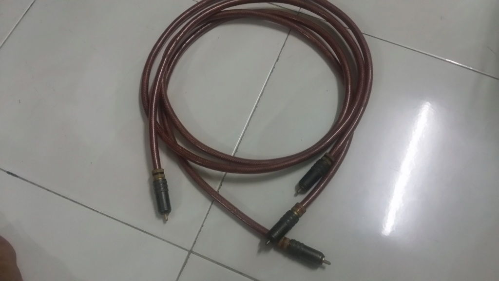 Ensemble  Hotline RCA cable SOLD 20200524