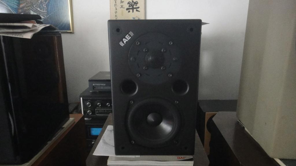 Acoustic Energy AE1 classic speaker  Dsc06535