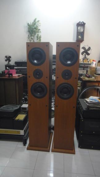 Proac D38 speaker Dsc06639