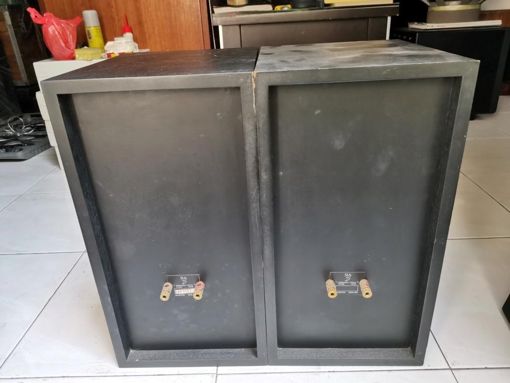 Celetstion SL6si speaker Img_2253