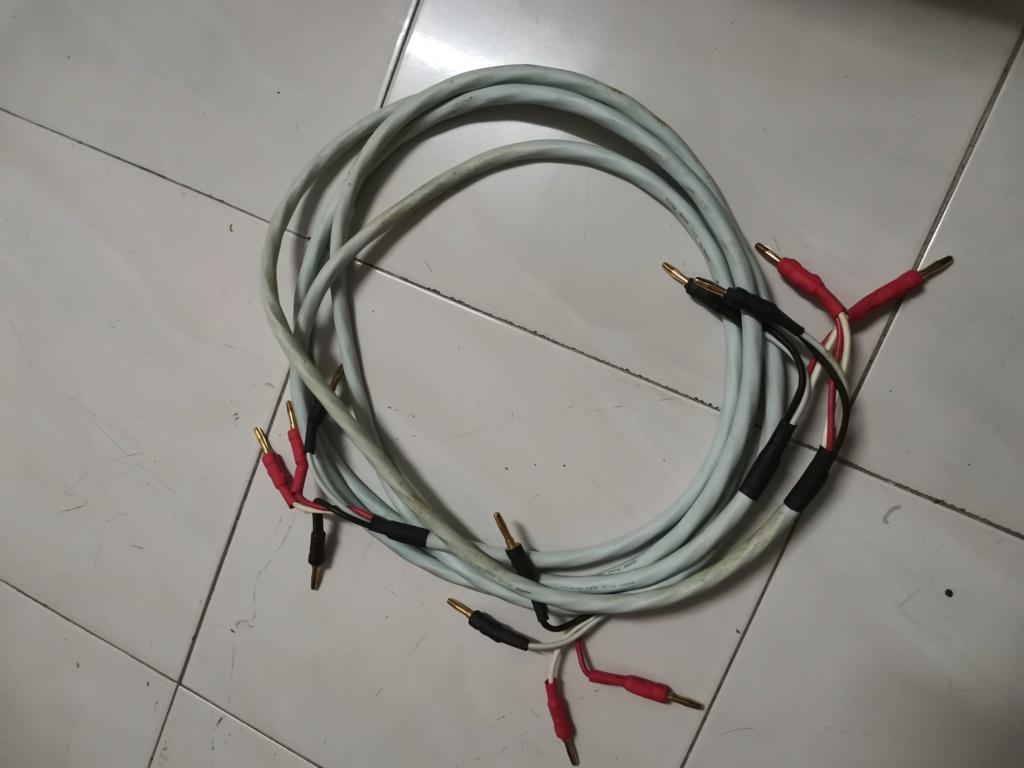 Supra Rondo 4 x 2.5 bi-wire speaker cable SOLD Img_2453