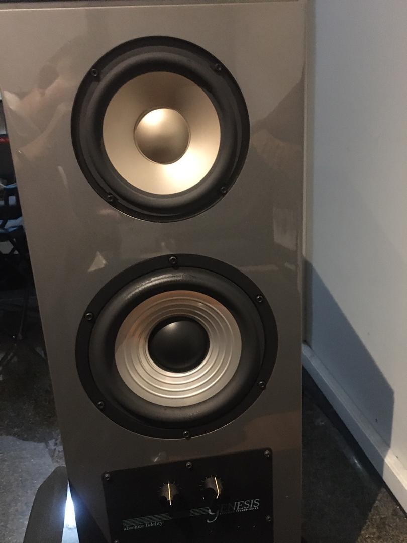Genesis Audio 5.3 speaker Whatsa15