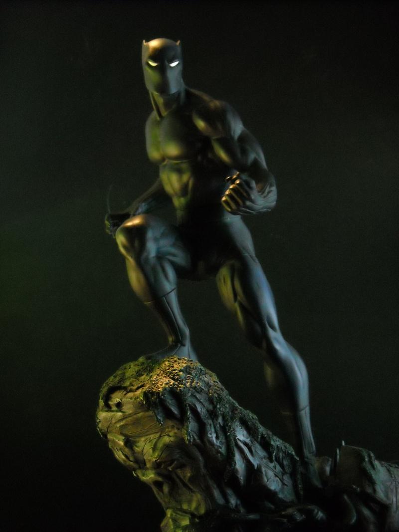 "PANTHERE NOIRE ""classic"" (Black Panther) Dscn0425"