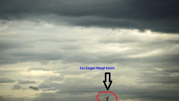 Wolkenraten - Seite 4 Wolken11