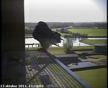 Zwolle /IJsselcentrale 2012 Hc289