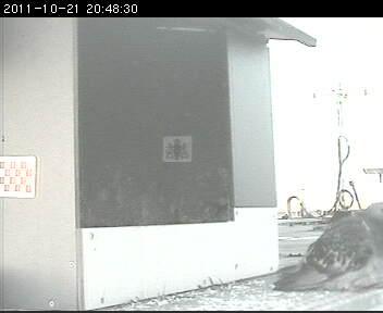 Den Bosch 2012 Image191