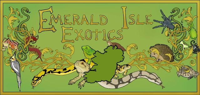 Emerald Isle Exotics Emeral11