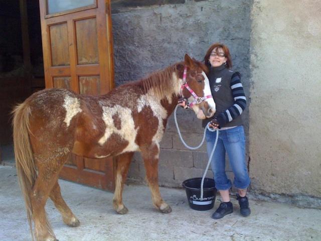 WALANIE (VANILLE) - ONC poney - adoptée en avril 2011 par voulk  - Page 5 39883410