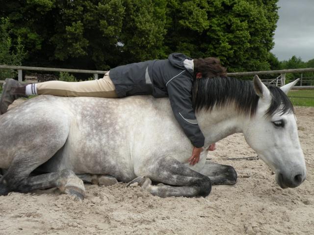 NOUVEAU CONCOURS PHOTO : la sieste à cheval ! Dscn3310