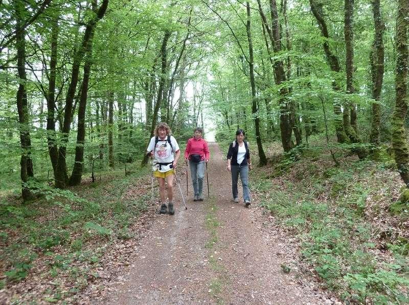 Dernière randonnée de la saison Bois_b10